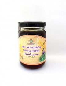 Honey Thistle